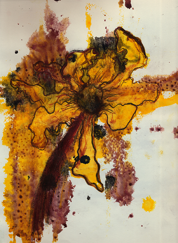 72d9x12sketchYellowFlower1