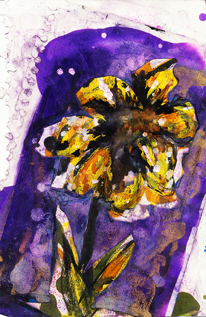 72aiYelloPurpFlower5x9collage051315